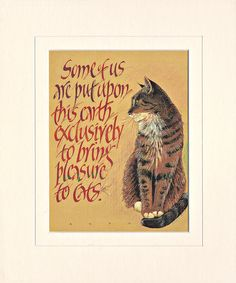 Mounted Cat Print the perfect print for all Cat Lovers