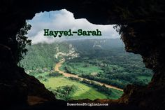 Hayyei-Sarah - Lessons and Crafts from this weeks Torah portion!