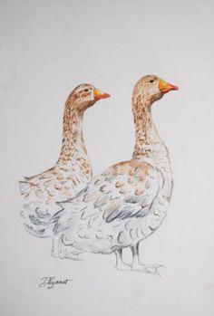 "Saatchi Art Artist Patricia Hyvernat; Drawing, ""twoo geese"" #art"