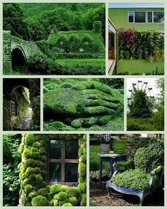 WABI SABI Scandinavia -   Garden Greens