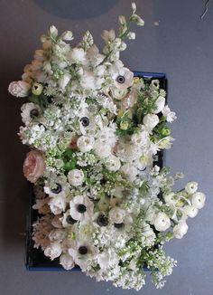 The Flower Appreciation Society.