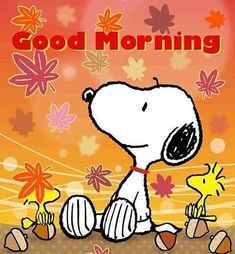 Gifs Snoopy, Snoopy Quotes, Snoopy Halloween, Snoopy Wallpaper, Fall Wallpaper, Charlie Brown Christmas, Charlie Brown And Snoopy, Peanuts Cartoon, Peanuts Snoopy