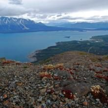 Hiking and skiing trails near Atlin | Yukon Hiking