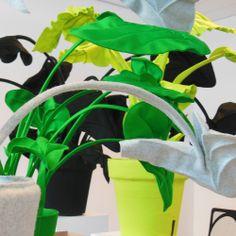 Feltplants from Wandschappen