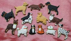 Maya says: I love the cookies, especially the poddle and the bulldog and the cats, of course