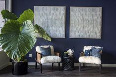 How The Millennial CEO Of St. Frank Created A Global Source For Luxury Home Décor