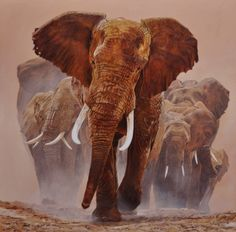 On aime...  elephants painting by Guy Combes    animals  elephants presse print  #30 millions d'amis magazine -photography -illustration -elephants by Guy Combes - #artiste né au kenya en 1971 - GUY COMBES was born in Kenya in 1971 -   www.guycombes.com/