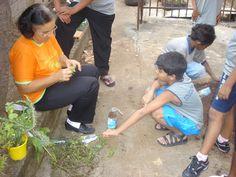 Em BH, 170 escolas ensinam com hortas comunitárias