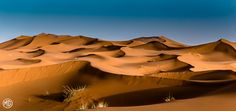 Dunes | Flickr - Photo Sharing!