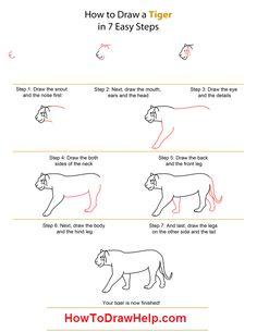 How To Draw Barasingha