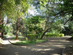 Combina Tudo - O Blog que é Sua Cara: Parque na Zona Sul: Severo Gomes
