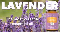 Lavender Oil free in June with qualifying order Young Living Lavender Oil, Buy Essential Oils, Sage, Essentials, Pure Products, February, Posts, Videos, Tips