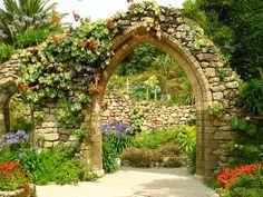 small garden espelier - Yahoo Image Search Results