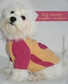 Download this free dog sweater pattern in pdf to sew a cool jersey with raglan sleeve for your dog! To keep your dog warm and fashion all year!