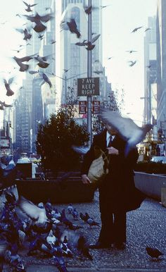 NYC. Times Square birdman. // Photo credit: Steven Siegel.