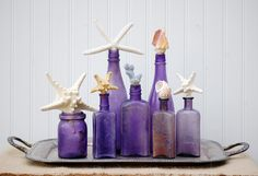 Antique Bottle Collection Seashells and by JennasBeachRetreat, $149.99