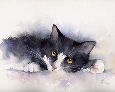 I Wasn't Asleep - Rachel Mcnaughton - cat