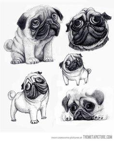 funny-cute-pug-draw-face