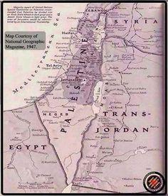 Old Maps, National Geographic, Free, Magazine, Palestine, Politics, Antique Maps, Magazines, Old Cards