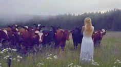 L'artista svedese Jonna Jinton si è esibita nel kulning, antico canto usato dai pastori scandinavi per richiamare il bestiame dal pascolo. Secondo la tradizione scandinava il kulning serviva anche per un altro scopo: spaventare e allontanare gli eventuali predatori. L'esibizione di Jinton ha avuto un grande successo così come dimostra questo video. ° twitter@fulviocerutti °