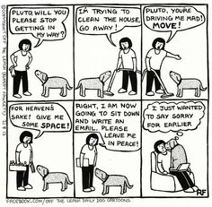 have a similar sense of guilt to your dog? : Do you have a similar sense of guilt to your dog? :you have a similar sense of guilt to your dog? : Do you have a similar sense of guilt to your dog? Funny Cats And Dogs, Funny Animals, Farm Animals, Animal Jokes, Wild Animals, Secret Life Of Dogs, I Love Dogs, Puppy Love, Dog Comics