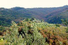 Agriturismo Malagronda, Parco Naturale del Monte Pausillo, Umbria, Italy