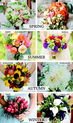 Wedding flowers by the season.  Maybe my colors will be sunflower yellow, dark gray/tan and that beautiful red!!