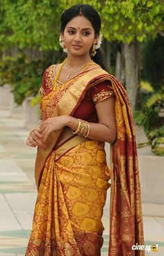 Being Married - Sasi Pradha Beautiful Girl In India, Beautiful Saree, Beautiful Gorgeous, Beautiful Bollywood Actress, Most Beautiful Indian Actress, South Indian Bride, Indian Bridal, Beauty Full Girl, Beauty Women