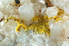 Cacoxenite, Diamond Hill, Quartz Mine, Antreville, South Carolina USA. Size 5x 4.5x 2 cm