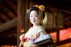 Maiko Mamefuji. Oiran & Geisha : Photo