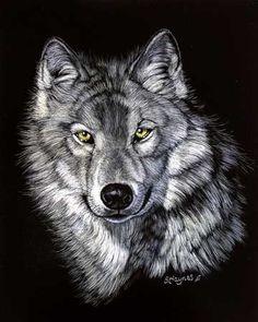 """Epic Wolf II by Sandra Haynes Scratchboard ~ 10"""" x 8"""""""
