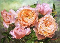 Flowers and Rose Paintings in oil and watercolor :: Watercolor and Oil Painting – Roses, Birds, Still lifes, Figurative Paintings, Watercolor DVDs- Susan Harrison-Tustain Watercolor Flowers Tutorial, Watercolor Paintings, Rose Paintings, Floral Paintings, Watercolours, Floral Artwork, Art Floral, Rose Oil Painting, Rose Art