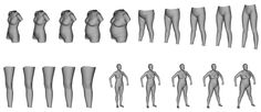 Eurofit Project - Detailed Results - Online Shape Analysis
