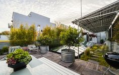 Open House Obsession: San Francisco's Best Roof Garden, Hiding in SOMA, $2.395M | California Home + Design