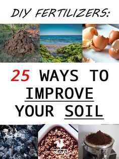DIY Fertilizers: 25 Ways to Improve Your Soil How to make DIY fertilizer step by step. 25 ways to make it so you stop using chemicals that poison your soil. Fertilizer For Plants, Liquid Fertilizer, Organic Fertilizer, Garden Fertilizers, Bokashi, Soil Improvement, Grow Organic, Organic Fruit, Organic Plants