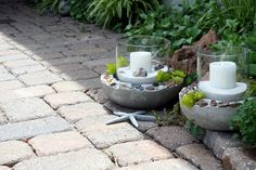 diy cement planters- I can use all those lovely shells from the beach!