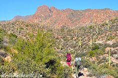 Writer in the Wild: Superstition Wilderness: Terrapin Pass Overnighter...