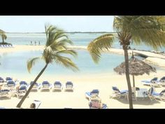 YES!!! LOVE THE OCEAN SUIT!!!!!! WE MUST GO HERE AND FEED THE FLAMINGOS!!! LOL Renaissance Aruba Resort & Casino Hotel - Aruba, Caribbean - On Voyage.tv