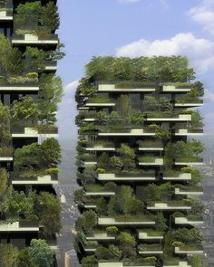 Milan's Bosco Verticale (Vertical Forest), designed by Boeri Studio....unlike the 'vertical wasteland' currently occupying our apartment balcony....
