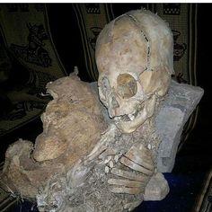 Alien skeleton found in Peru #ghost #ghosts #dead #paranormal #spooky #horror #spirit #alien