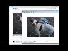 Cuando se encuentra la imagen adecuada, siempre es bueno verificar en Google images o tineye.com (buscadores reversos de contenido fotográfi...