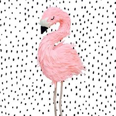 Pretty in pink flamingo piñata! This is the most realistic flamingo piñata you'll find! The frame is completely hand sculpted and finished with premium crepe paper.All pieces are handcrafte...