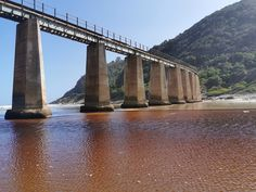 The unused railway bridge at Kaaimans River stands tall above the water line. Water Under The Bridge, Black Water, Stand Tall, River, Photography, Photograph, Photo Shoot, Fotografia, Rivers