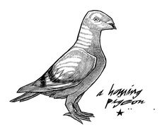 Simple Pigeon Tattoo Design