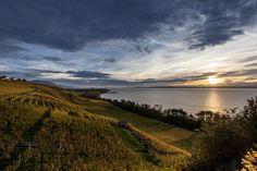 Image de Swiss Wine Promotion Oeuvre D'art, Photos, Celestial, Mountains, Sunset, Canton, Nature, Travel, Outdoor