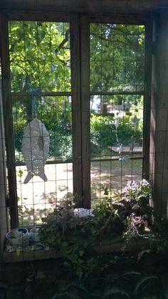 Okno v plotě verze léto 2014