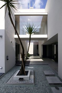 Vase Residence by Esprex Modern Architecture minimalistic courtyard