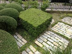 Inspiring Garden Design: Geometric Juxtapositions - Private Newport