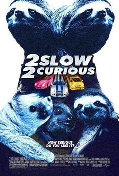 sloths-  fast  furious spoof