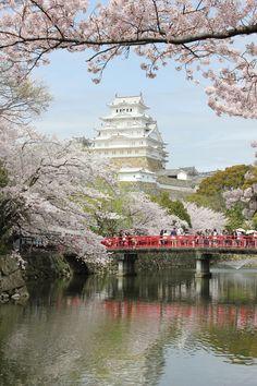 Fotografia Pearl White Himeji Castle in Spring ,Japan de Randi Jensen na 500px